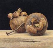 Gedroogde vruchten met spijker © Aad Hofman