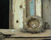 Nestje © Aad Hofman