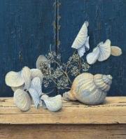 Schelp met hortensia © Aad Hofman
