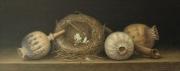 Vogelnestje met papaverbollen © Aad Hofman